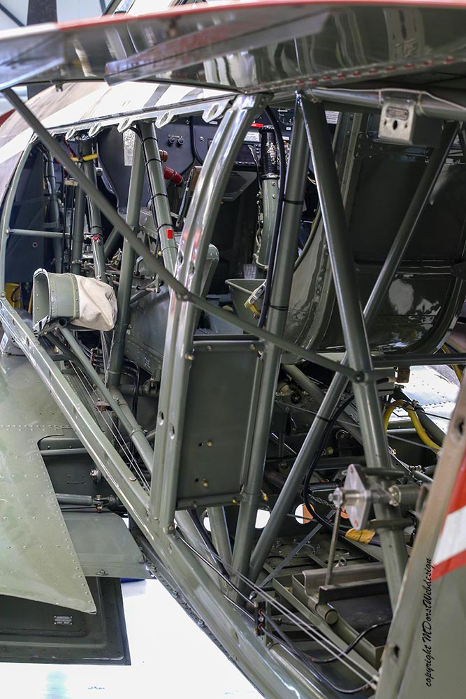 Yak-11_D-FYWM_2017-08-31_-6.jpg